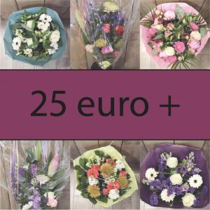 25 euro +